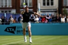 Tenis, ATP Queen's - Andy Murray - Zdroj ČTK, PA, Steven Paston